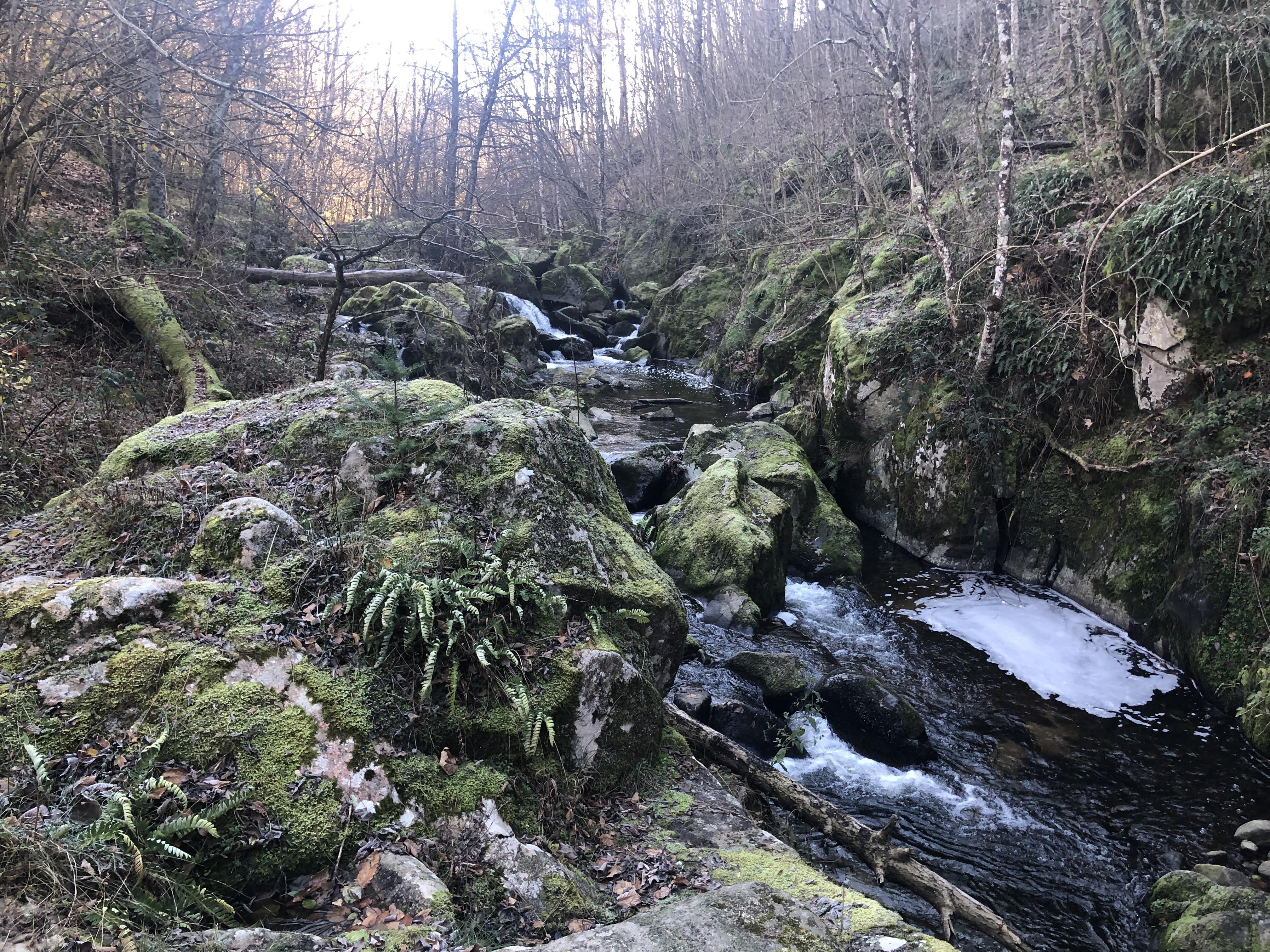 Les rapides sous le hameau de Chamblard