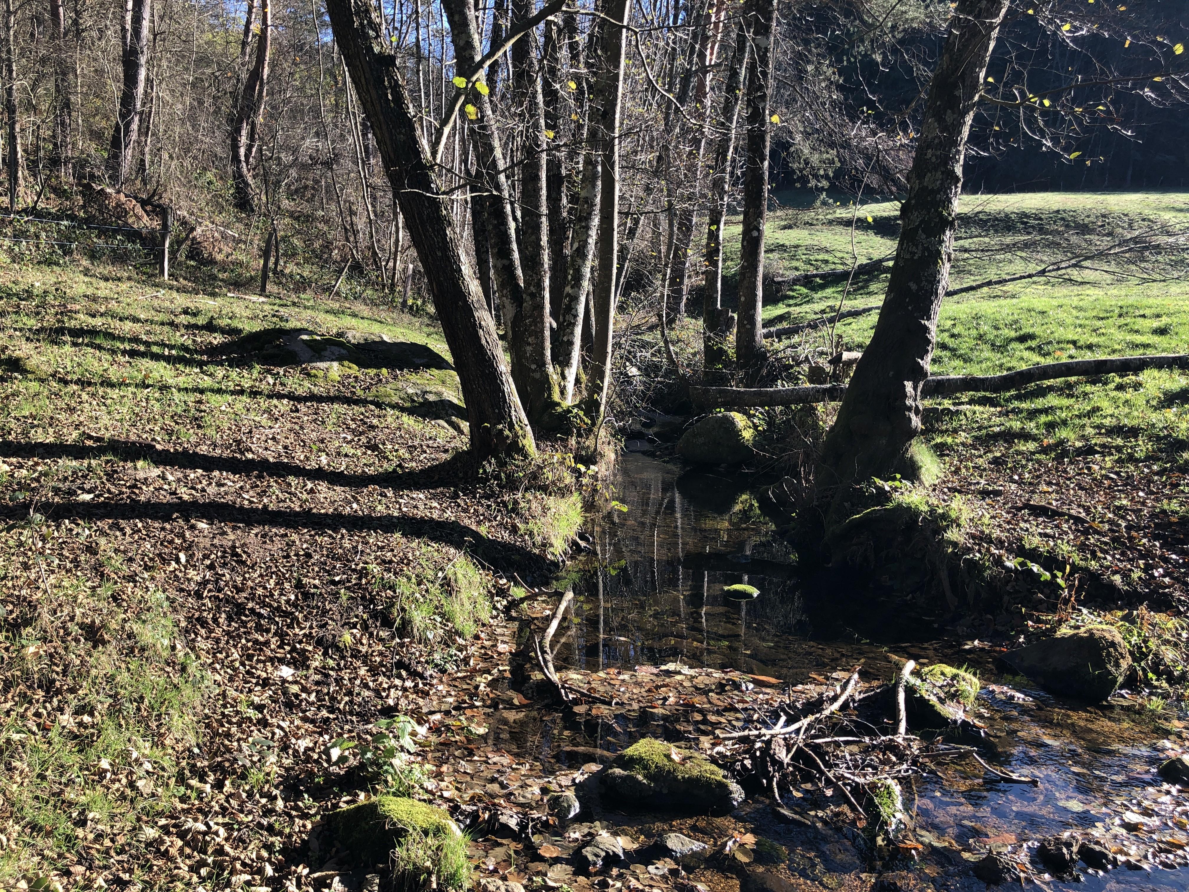 Le ruisseau de Saint-Genest se jette dans le Grozon