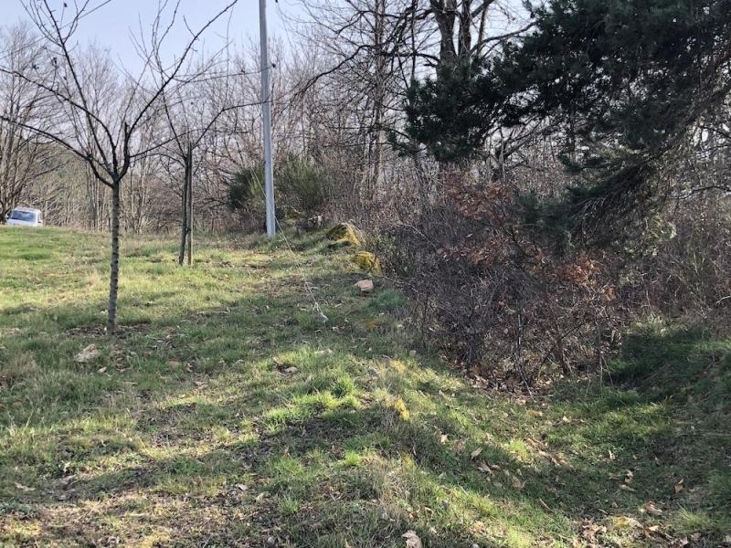 22 chemin de la pigne le mur de broussailles
