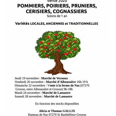 Arbres fruitiers vente gallix