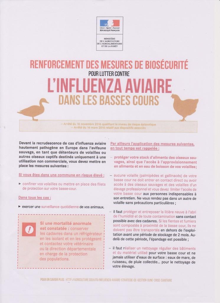 Grippe aviaire document ministe re 06 nov 20